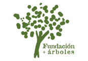 Fundacion + arboles