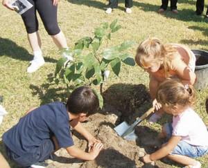 Niños plantando un árbol