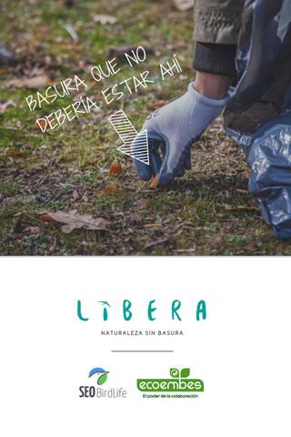 Libera V